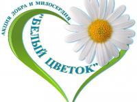 """Всероссийская акция """"Белый цветок"""""""