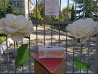 "Итоги акции ""Белый цветок"""